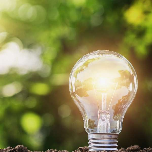 Switched on lightbulb in earth